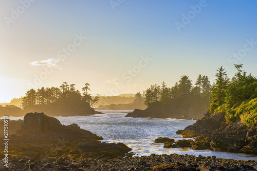 Платно Shoreline at wild pacific trail in Ucluelet, Vancouver Island, BC