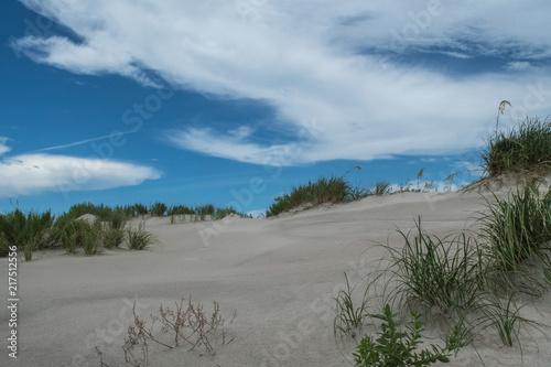 Fototapeten Nordsee Summer Beach Scenes - Bald Head Island North Carolina