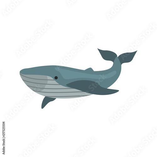 Blue Whale Color Vector Icon Flat Design