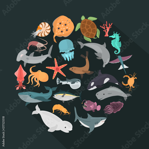 Photo  Sea animals color vector icons set isolated on black with shadow