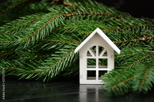 Fotografie, Obraz  White house on a background of a green fir branch