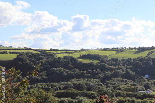 Foto op Plexiglas Grijze traf. Countryside Nature Landscape Background