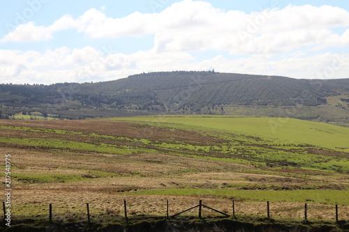 Foto op Canvas Pistache Nature Landscape Background