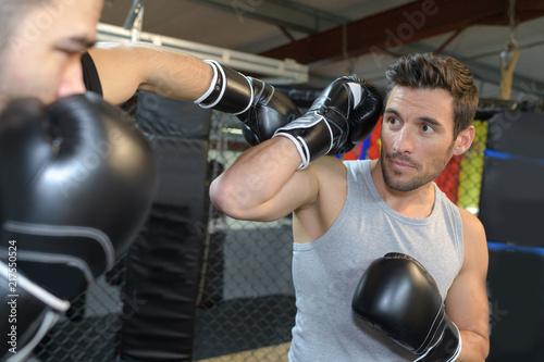 Fototapeta sport sporty-walki-boks