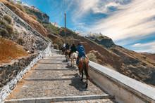 Tourists On Donkeys Climb The ...