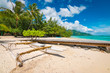 Outrigger canoe on tropical beach.