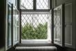 canvas print picture - offenes zweiflügeliges altes Fenster mit altem Gitter davor und Blick auf Bäume und Gebäude
