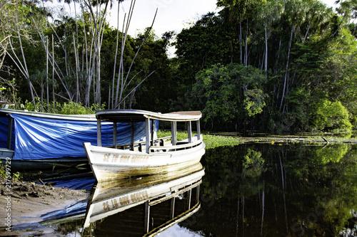 Fototapeta Marozinho river - Santarem - PA