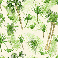 Fototapeta Drzewa Palmtrees Seamless Pattern. Green coconut or queen palm trees with leaves. Beach and rainforest, desert coco flora. Foliage of subtropical fern. Green palmae or jungle arecaceae. Fashion Botany