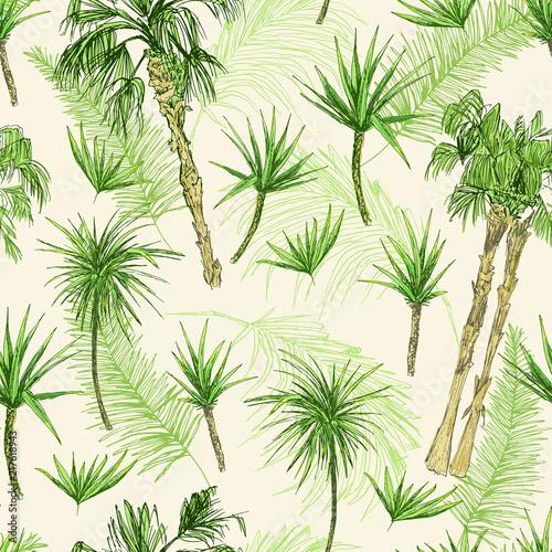 wzor-palmtrees-zielone-palmy-kokosowe-lub-krolowej-z-lisci-plaza-i-lasy-deszczowe-pustynna-flora-kokosowa-liscie-subtropi