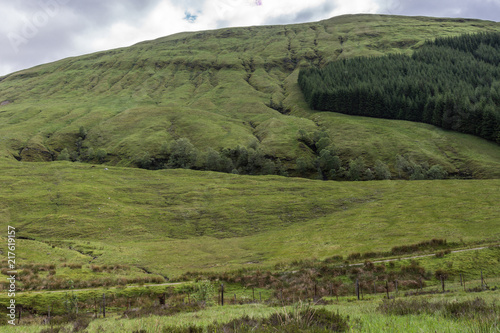 Cadres-photo bureau Colline Bridge of Orchy, Scotland, UK - June 12, 2012: Green hills with pasture and forests descend towards Loch Tulla. Rural road at bottom barely visible.