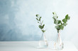 canvas print picture - Eucalyptus branches with fresh leaves in vases on table