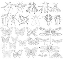 Set Book Coloring Insects Char...