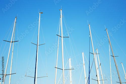 Valokuva  Many yacht masts.