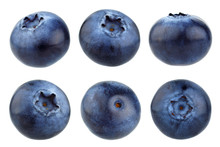 Blueberry Berries Isolated On ...