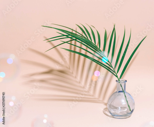 Fototapeta Minimal pure composition with palm leaf in a vase on pastel background. obraz na płótnie