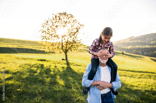 A senior grandfather giving a small granddaughter a piggyback ride in nature Canvas Print