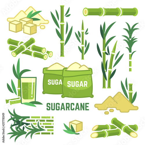 Sugar plant agricultural crops, cane leaf, sugarcane juice vector icons Fototapeta
