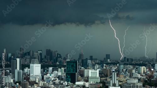 фотография 雷・稲妻・東京