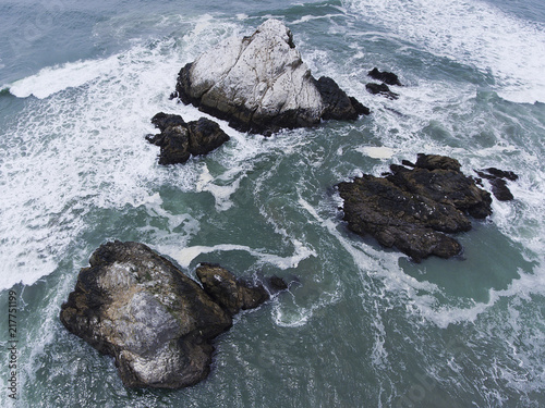 Láminas  Seal Rocks in San Francisco, California
