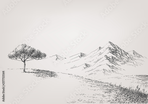 Fototapeta Alpine meadow hand drawing. High hills and mountains in the background obraz