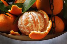 Citrus × Clementina Clementine