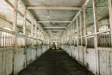 Inside Old Wooden Stable Or Barn With Horse Boxes, Tunnel Or Corridor View