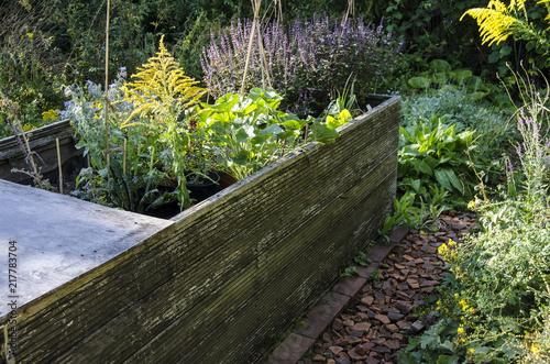Hochbeet Permakultur Garten Gartenbau Okosystem Kanadische Goldrute