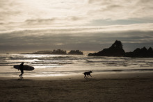A Surfer And His Dog Walking On Spring Afternoon At Cox Beach, Vancouver Island