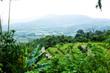 Mountain in the rainy season