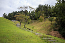Winding Stairway Up Grassy Hil...