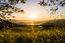 Beautiful Napa Valley Sunset 3