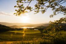 Beautiful Napa Valley Sunset