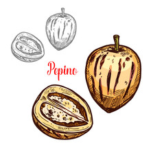 Pepino Fruit Or Exotic Melon P...