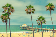 Palm Trees On Manhattan Beach And Pier In Los Angeles, California. Vintage Processed. Fashion Travel And Tropical Beach Concept.