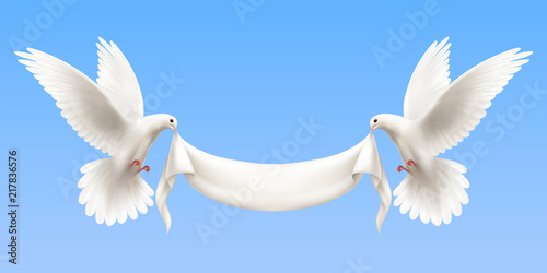 White Pigeons Realistic Banner Fototapete