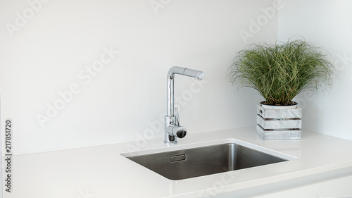 Fotomural  Modern kitchen sink and faucet with decorative flowers.