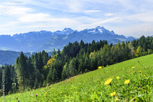 Tuinposter Purper Spätsommer in der Ostschweiz