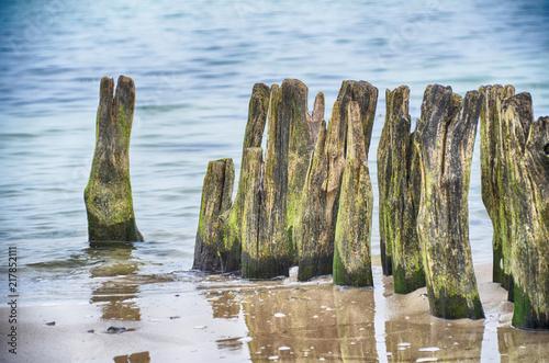 Spoed Foto op Canvas Noordzee Buhnen
