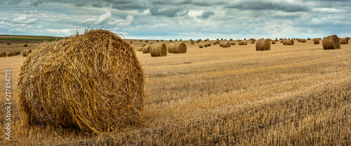 Obraz na plátne view of hay bales on the field after harvest
