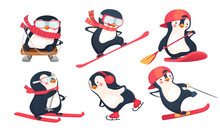 Active Penguins In Winter And ...