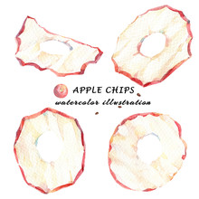 Watercolor Set Of Apple Chips Isolated On White Background.
