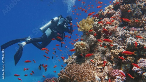 Photo Man scuba diver admiring beautiful colorful coral reef