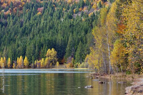 Autumn with the yellow foliage in Lake Saint Ann Wallpaper Mural