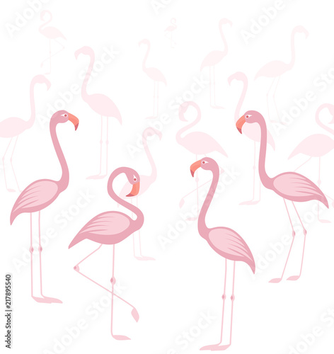 Canvas Prints Flamingo Bird Vector illustration of a pink flamingo. Tropical bird flamingos