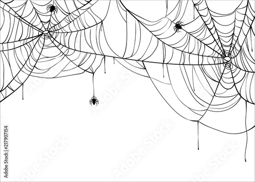 Halloween spiderweb vector background with spiders, copy space Fototapet