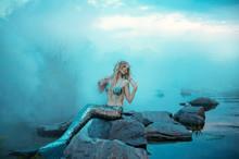 Wonderful Young Mermaid Is Rel...