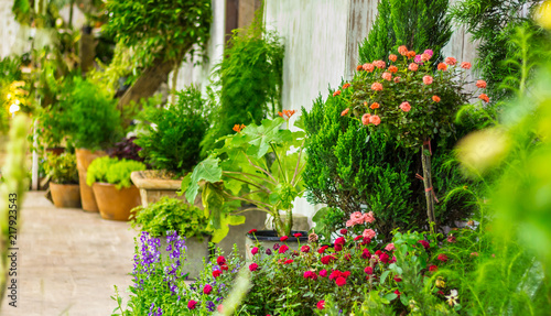 Papiers peints Jardin Relaxing area in cozy home garden on summer./ Beauty and relaxing garden with flower pot decoration in cozy home flower garden on summer.