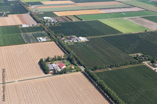 Slika na platnu Aerial view Dutch polder Noordoostpolder with farmhouses and agricultural landsc
