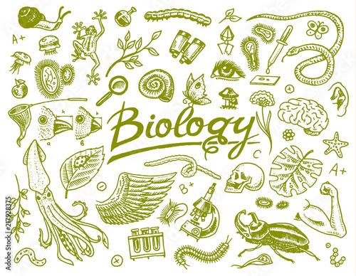 Fotografía  Scientific laboratory in Biology